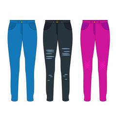 women jeans flat vector image