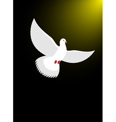 White dove flies in dark on divine light Magical vector image