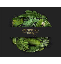 circle banner with green tropical leaves vector image