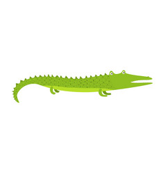 cute cartoon green long crocodile with short legs vector image