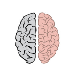 human and robot brains vector image