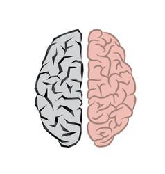 Human and robot brains vector