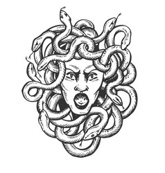 medusa greek myth creature engraving vector image