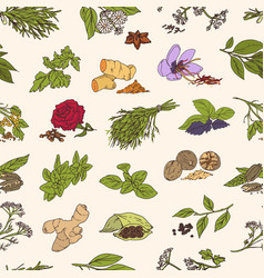 seamless pattern with various fresh tasty spices vector image
