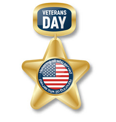 veterans day gold star icon logo realistic style vector image