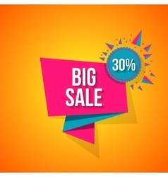 Sale special offer 30 off vector image vector image