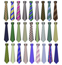 a set of business business ties on a white vector image