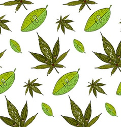 Cannabis and coca pattern vector image