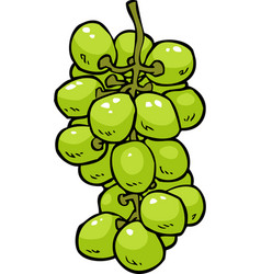 cartoon doodle grapes vector image