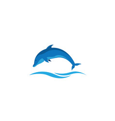 dolphin smart fish jump in the sea for logo design vector image