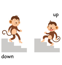 Opposite up and down vector