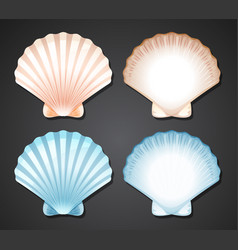 Set of scallop seashell vector