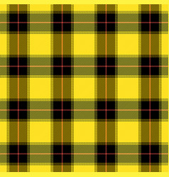 tartan pattern scottish cage background vector image
