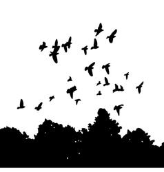 Black silhouettes of a flock doves columba livia vector