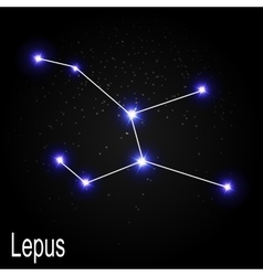 Lepus Constellation with Beautiful Bright Stars on vector image