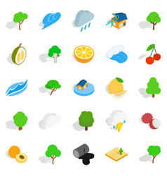 Pure land icons set isometric style vector