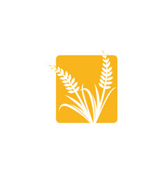 Wheat iconic logo designs template farm vector