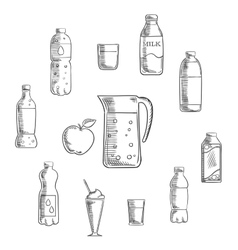 Beverages and drinks sketches set vector image vector image