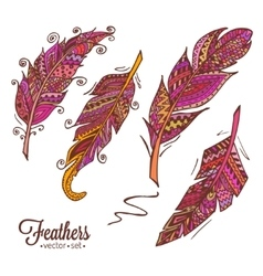 hand drawn feathers 2 vector image vector image