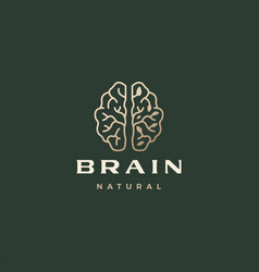 brain leaf sophisticated aesthetic logo icon vector image