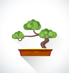 flat bonsai icon vector image