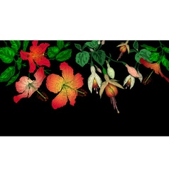 Hibiscus and Fuschia Flowers on a Dark Background vector image