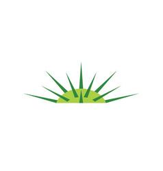 Jimson weed datura logo icon vector