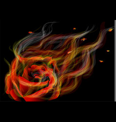 Rose in fire vector