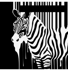 dripping zebra silhouette vector image vector image
