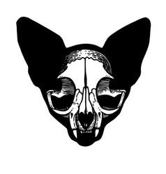 tattoo skull of a cat vector image