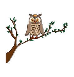 owl bird in branch vector image vector image