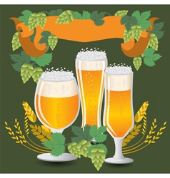 Glasses beer with wheat and hops vector image