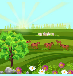 Horses on a green field farm ville sunny vector