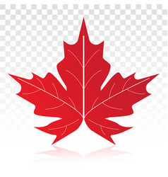 Red maple leaf flat icon on a transparent vector