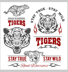 tigers custom motors club t-shirt logo on vector image