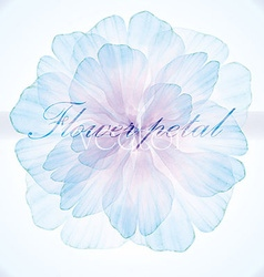 Watercolor floral vintage card vector image