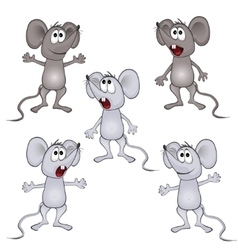 funny rat vector image