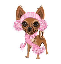 little dog in a knitted hat vector image vector image