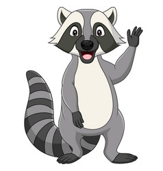 cartoon raccoon waving on white background vector image