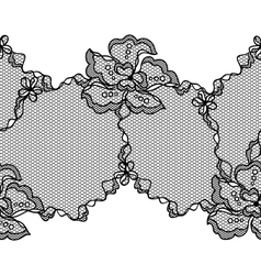 Lace fabric seamless border with abstact flowers vector image
