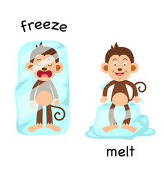 Opposite freeze and melt vector