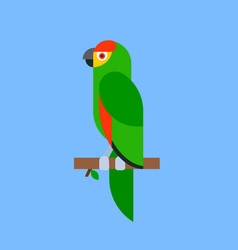 parrot green bird breed species animal nature vector image