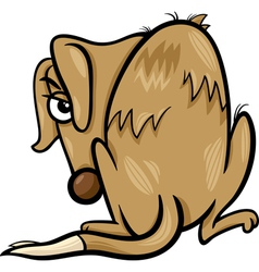 poor homeless dog cartoon vector image