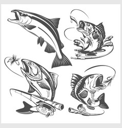 vintage trout fishing emblems and design elements vector image