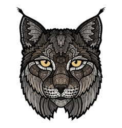 Wildcat lynx mascot isolated head vector image