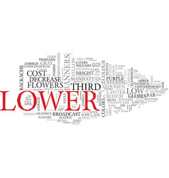 lower word cloud concept vector image