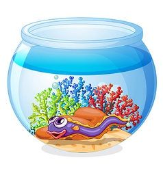 An eel fish inside the aquarium vector image vector image