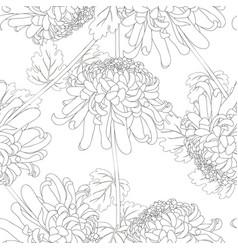 Chrysanthemum outline flower seamless on white vector