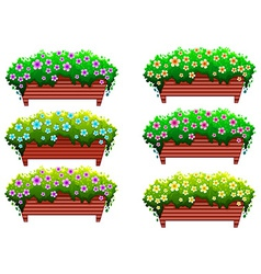 Houseplants with flowers vector
