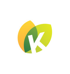 k letter leaf overlapping color logo icon vector image